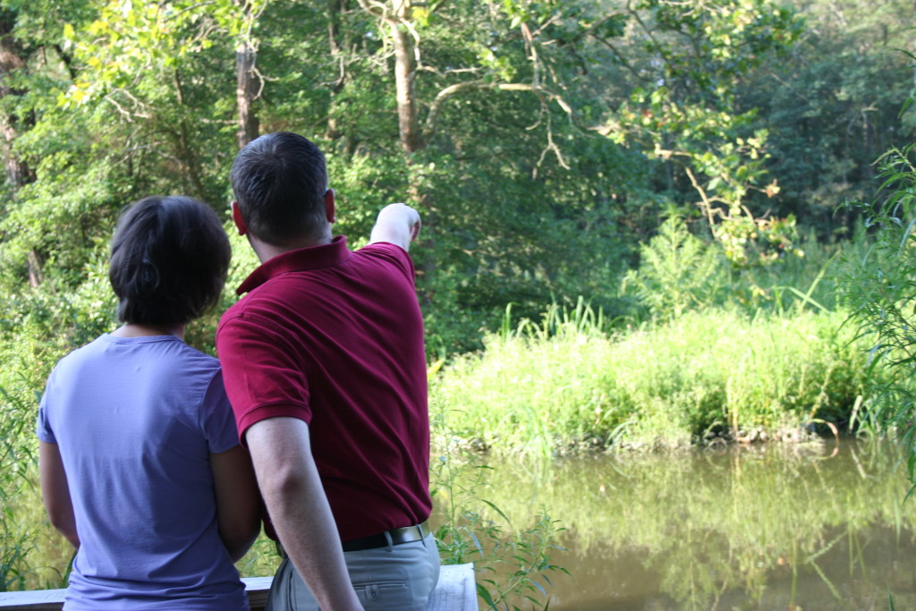 Nature abounds in Wicomico County